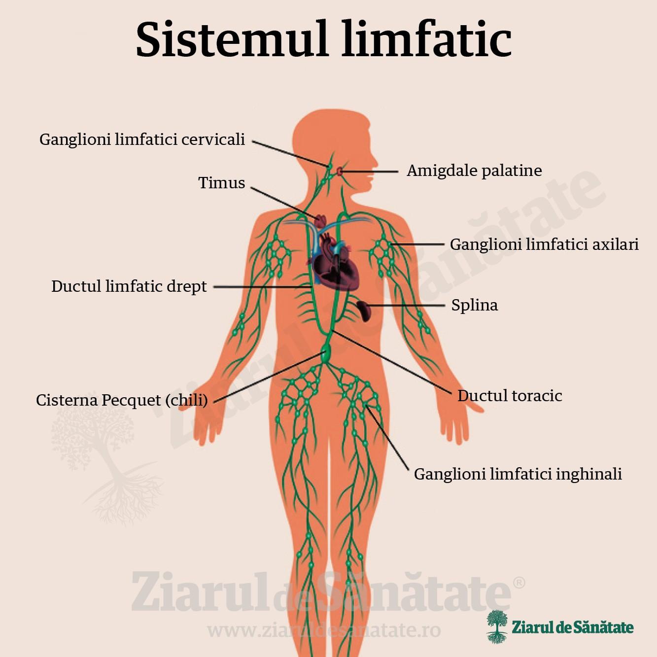 Diagnosticul și tratamentul edemului limfatic